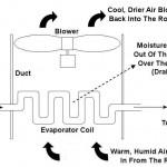evaporator1